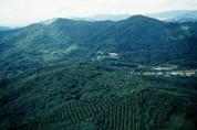 [산림청]임야대상 농업경영체 등록하세요!